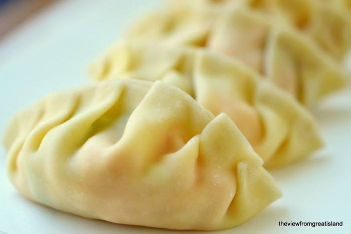 Salmon Potstickers with Wasabi Sauce Recipe | HeyFood — heyfoodapp.com
