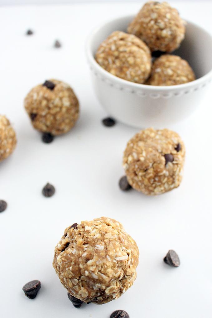 Quick 1 Bowl No Bake Vegan Protein Balls Recipe | HeyFood — heyfoodapp.com