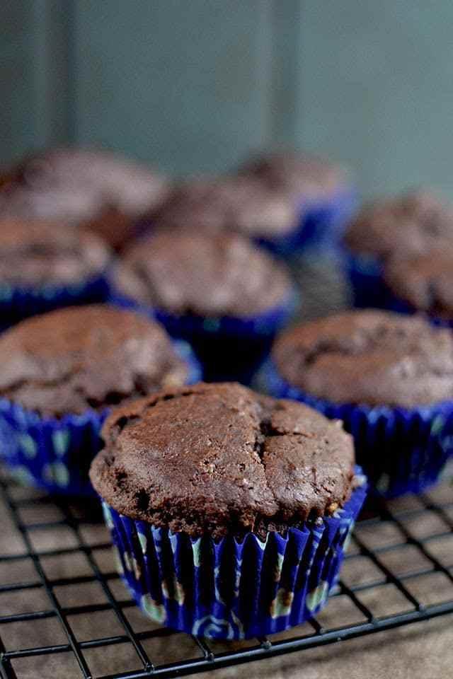 Chocolate Malted Muffins Recipe   HeyFood — heyfoodapp.com