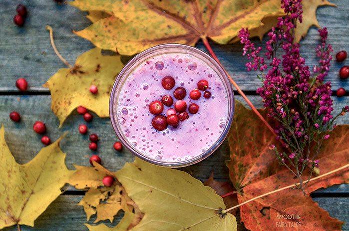 Super-Healthy Lingonberry Smoothie Recipe | HeyFood — heyfoodapp.com