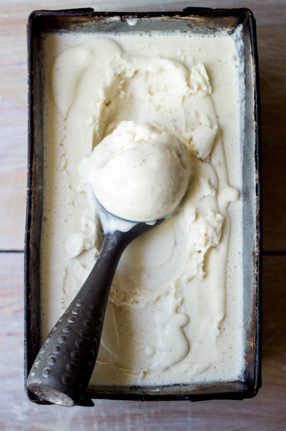 Vanilla Bean & Chocolate Chip Coconut Ice Cream Recipe | HeyFood — heyfoodapp.com