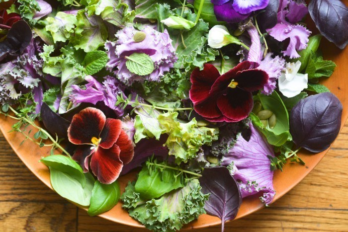 Purple Kale and Pansy Salad Recipe | HeyFood — heyfoodapp.com