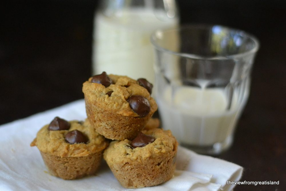 Chocolate Chip Peanut Butter Oatmeal Bites Recipe | HeyFood — heyfoodapp.com
