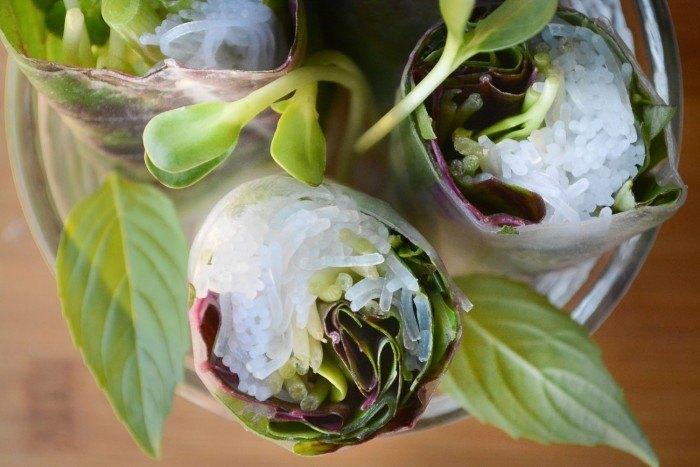 Spinach and Basil Summer Rolls Recipe   HeyFood — heyfoodapp.com